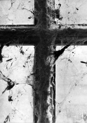 Untitled (window cross) (c. 1950s) by Wynn Bullock