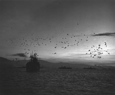 Pacific Theater, WWII (war ships at sea) (1942-45) by Wayne Miller