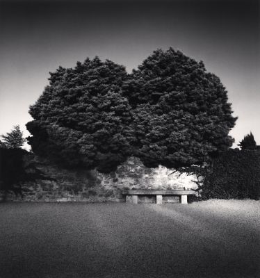 Bench and Trees, Les Baux-de-Provence (2003) by Michael Kenna