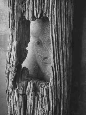 Untitled, October 22, 1959 (face in wood) (1959) by André Kertész