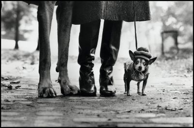 New York City (1974) by Elliott Erwitt