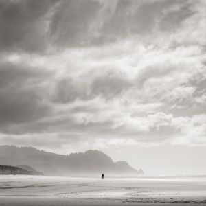 Beach Walker (2015) by Jeffrey Conley
