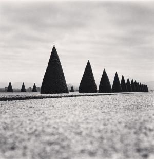 Eighteen Hedges, Versailles, France (1998) by Michael Kenna