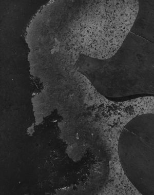 Untitled (cutout) (1940s) by Aaron Siskind