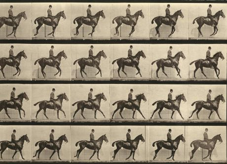 Eadweard Muybridge (English)