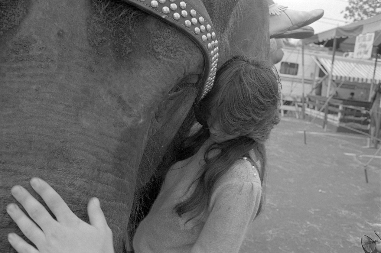 Untitled (girl and elephant), from Carnival (1984) by Mark Steinmetz