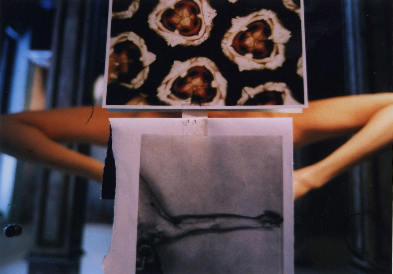 Untitled, from IPY (31) (2006) by Emi Anrakuji