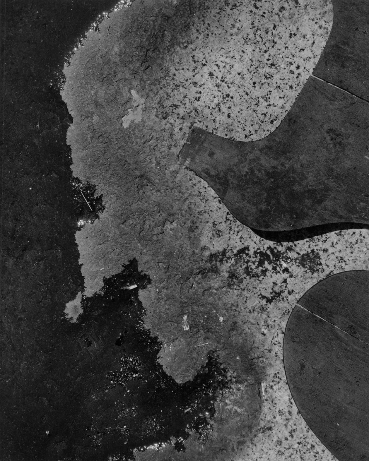 Untitled (wood pieces and water) (1940s) by Aaron Siskind