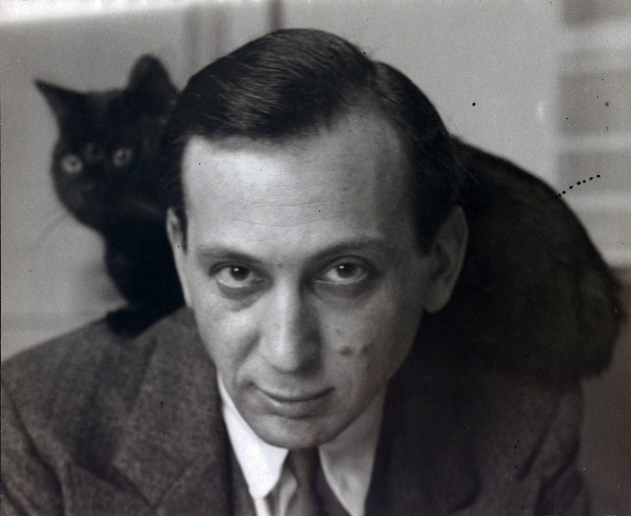 Self-portrait with chat noir (variant) (c. 1925) by André Kertész