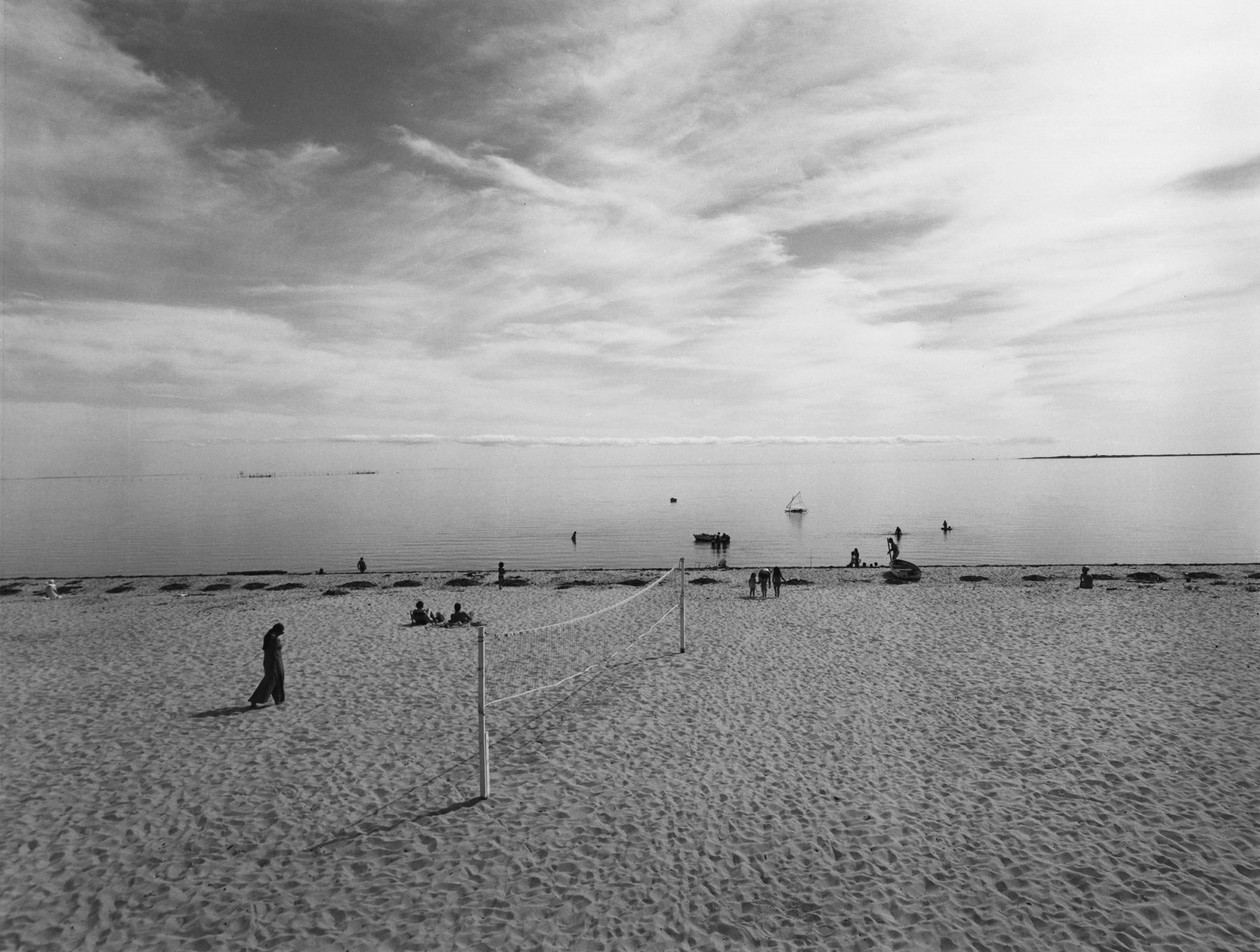 Cape Cod (1970s) by Harry Callahan