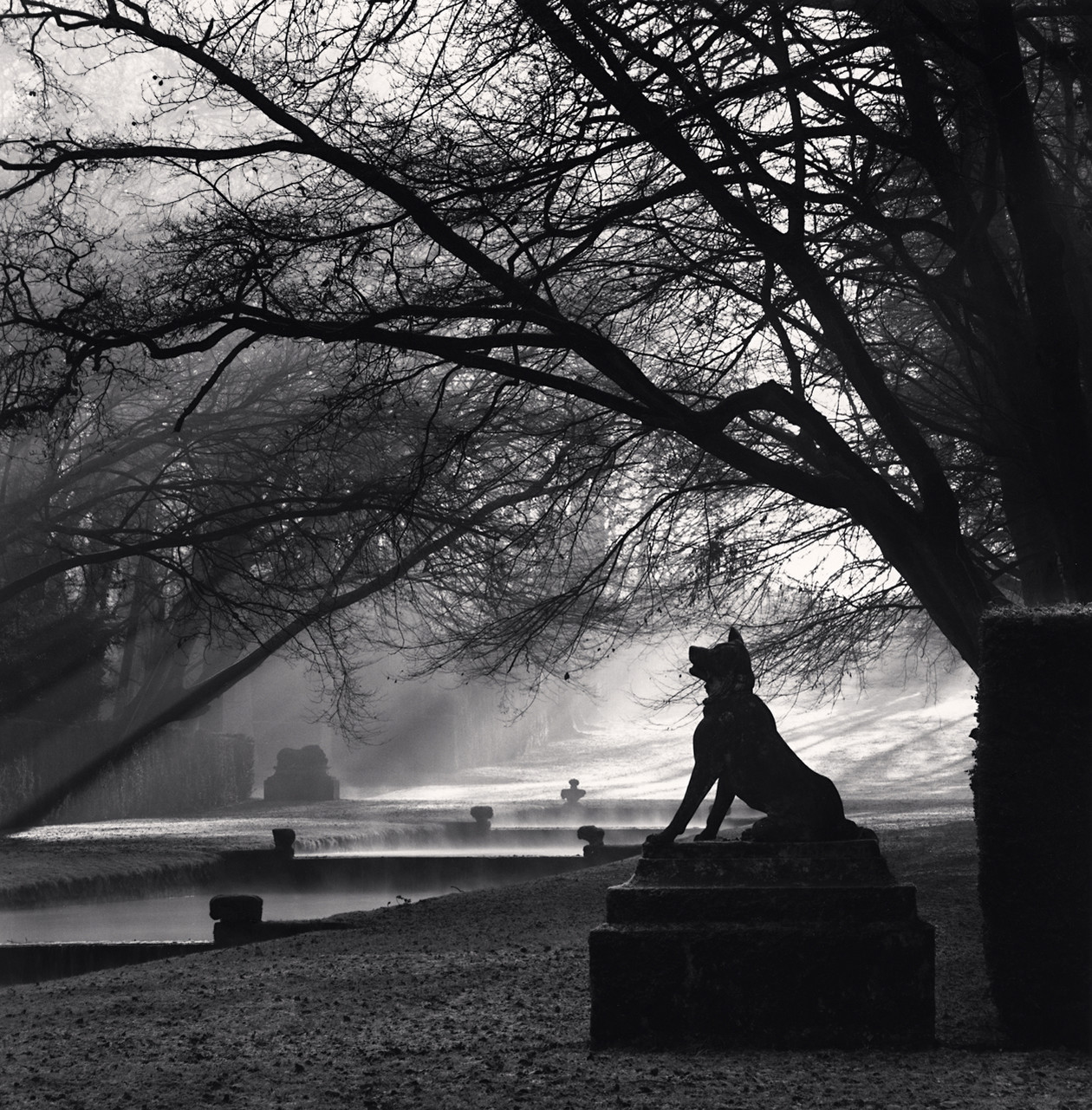 Guardian Wolf, Courances (1997) by Michael Kenna