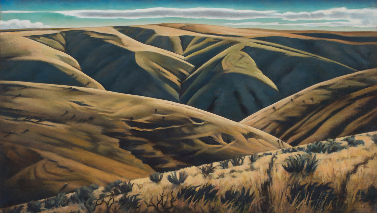 Draws and Canyons (2019) by Daniel Robinson