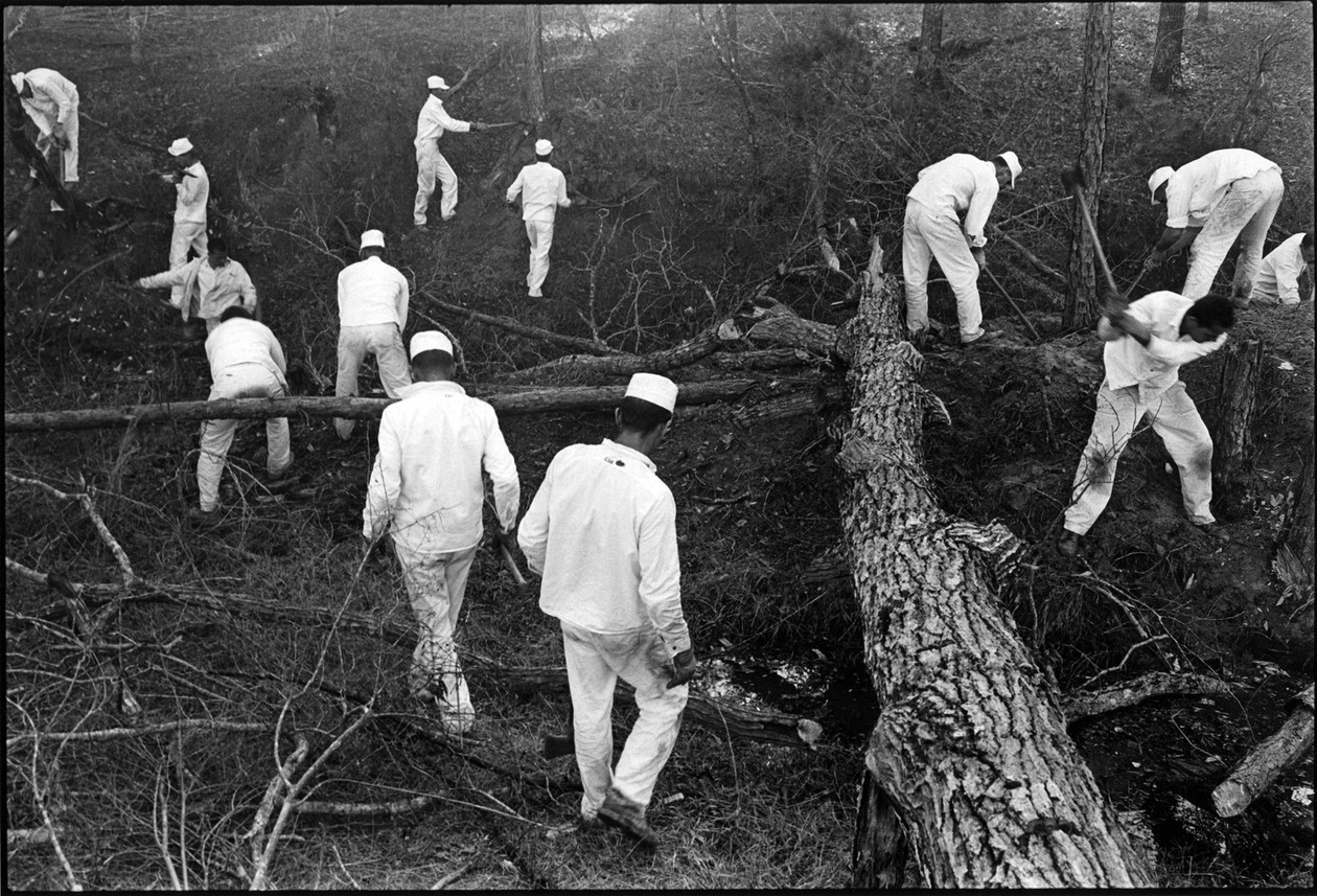 Clearing land (1967-1968) by Danny Lyon