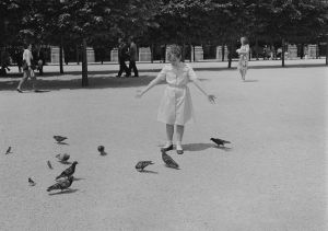 Palais Royal (1985) by Mark Steinmetz