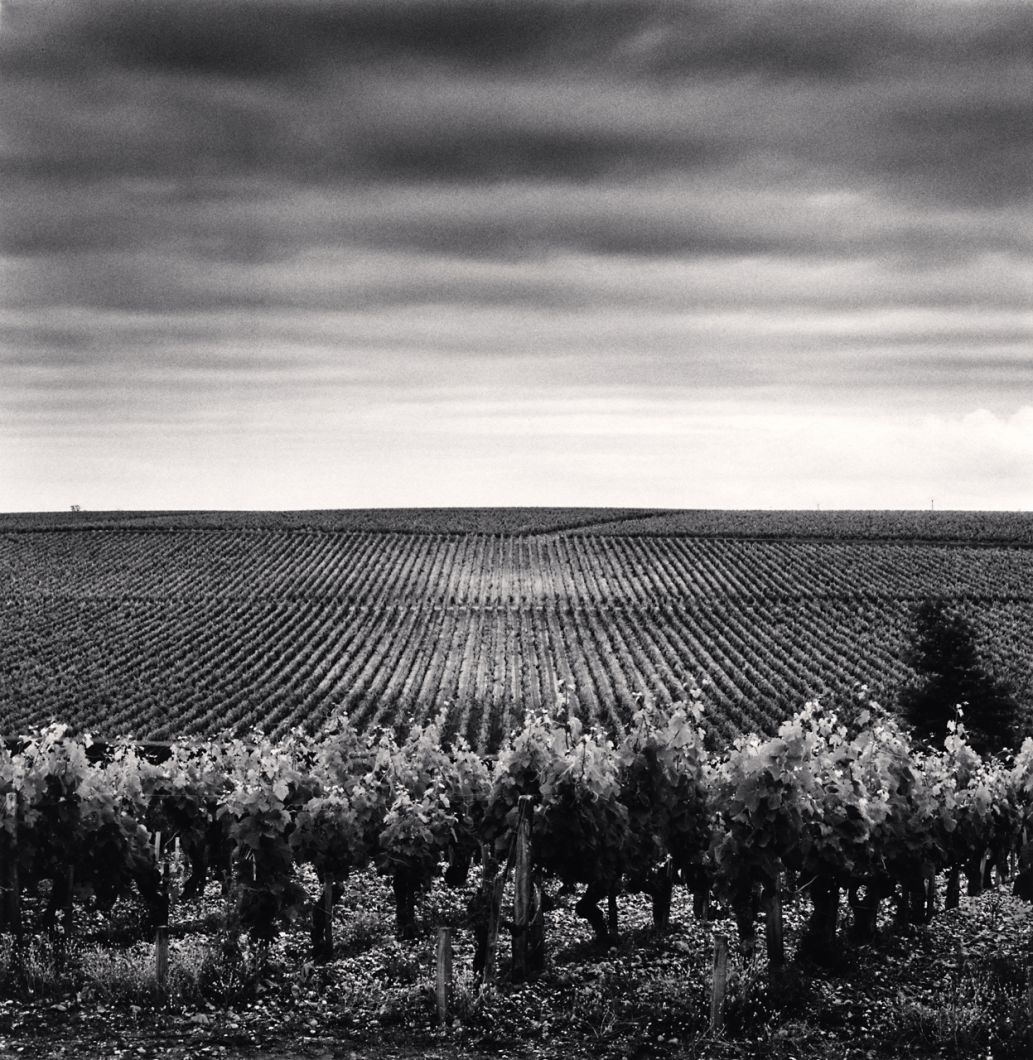 Chateau Lafite Rothschild, Study 3, Bordeaux (2012) by Michael Kenna
