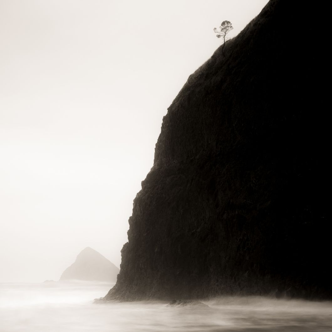 Lone Tree and Headland, Oregon (2016) by Jeffrey Conley