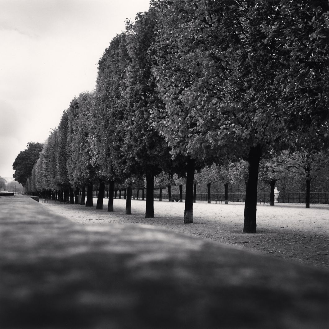 Tuileries Gardens, Study 3, Paris (2011) by Michael Kenna