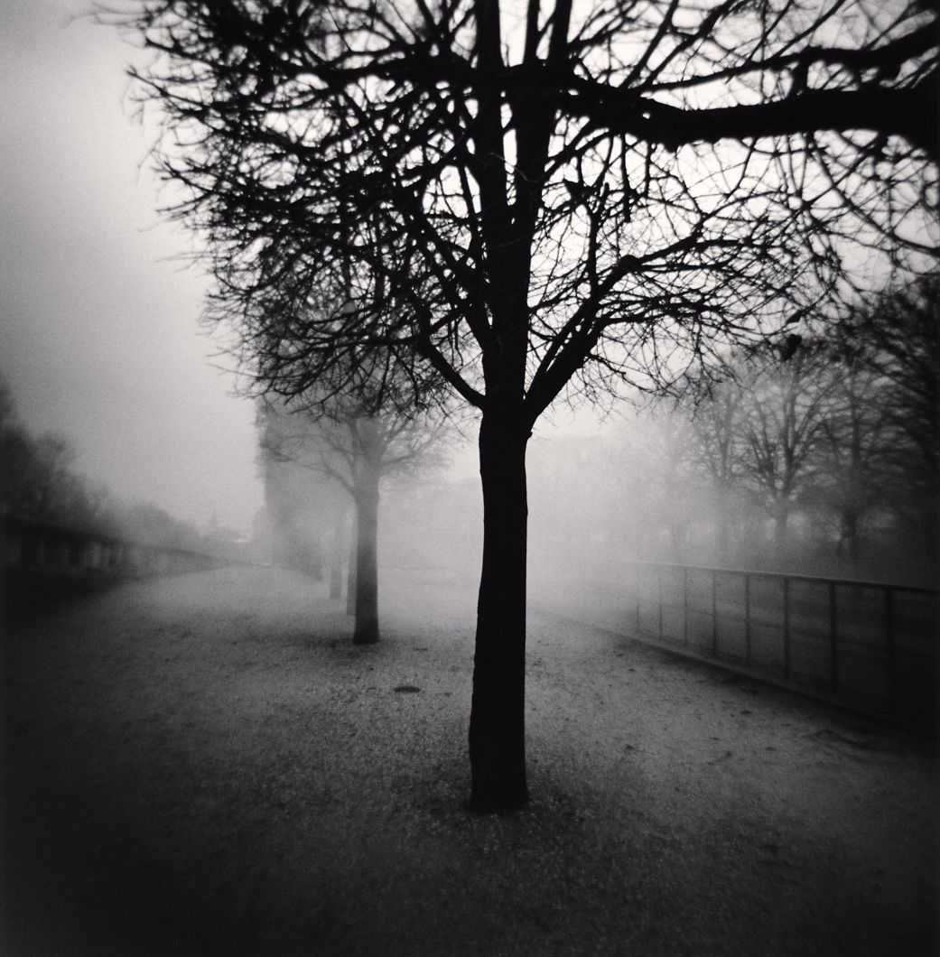 Tuileries Gardens, Study 5, Paris, France (2004) by Michael Kenna