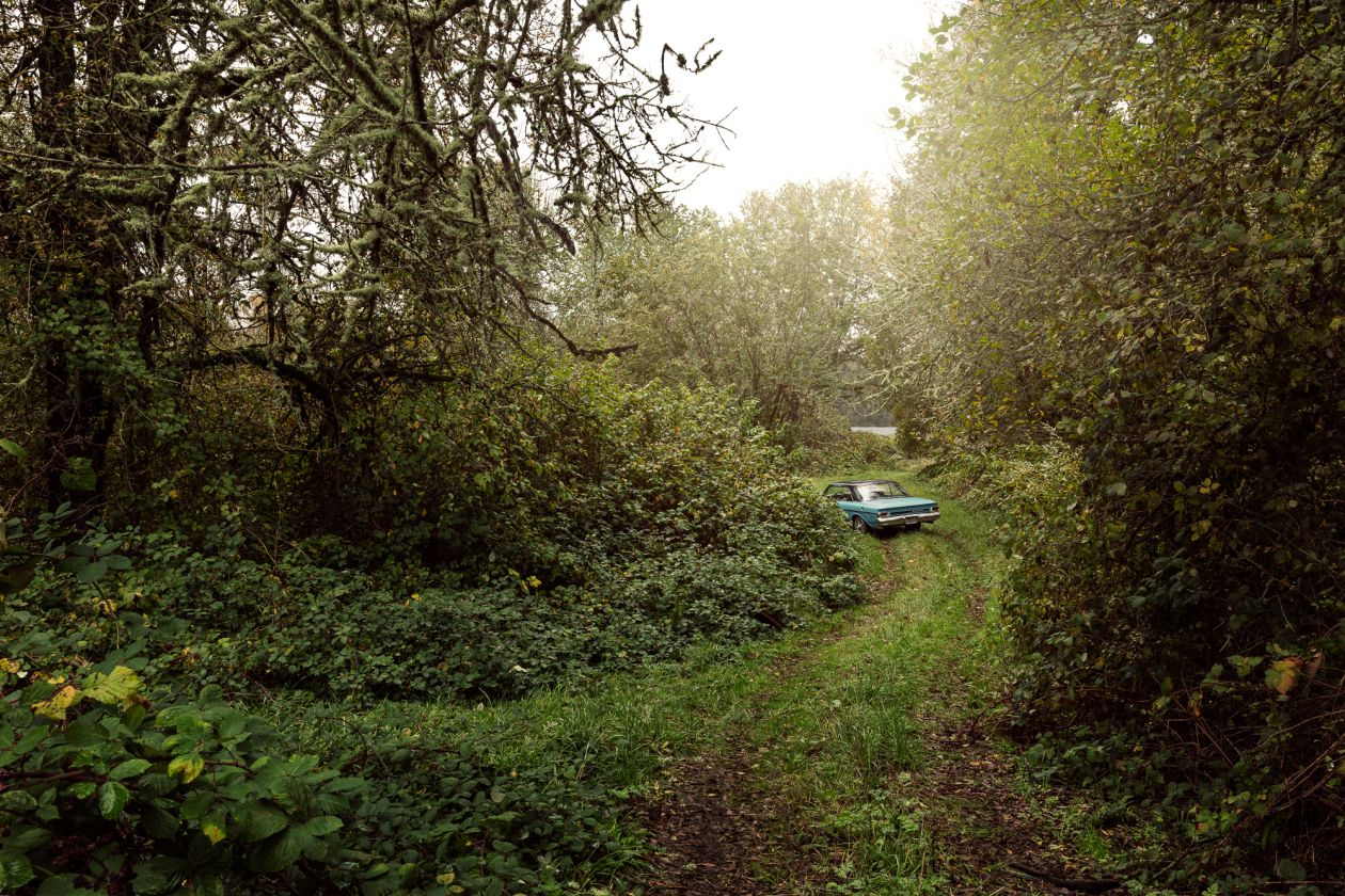 River Road: Milepost 38 (2015) by Holly Andres