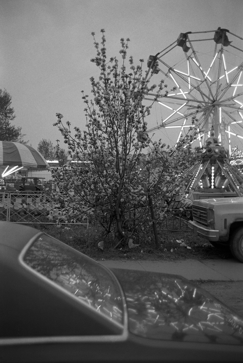 Untitled (ferris wheel at night), from Carnival (1983) by Mark Steinmetz