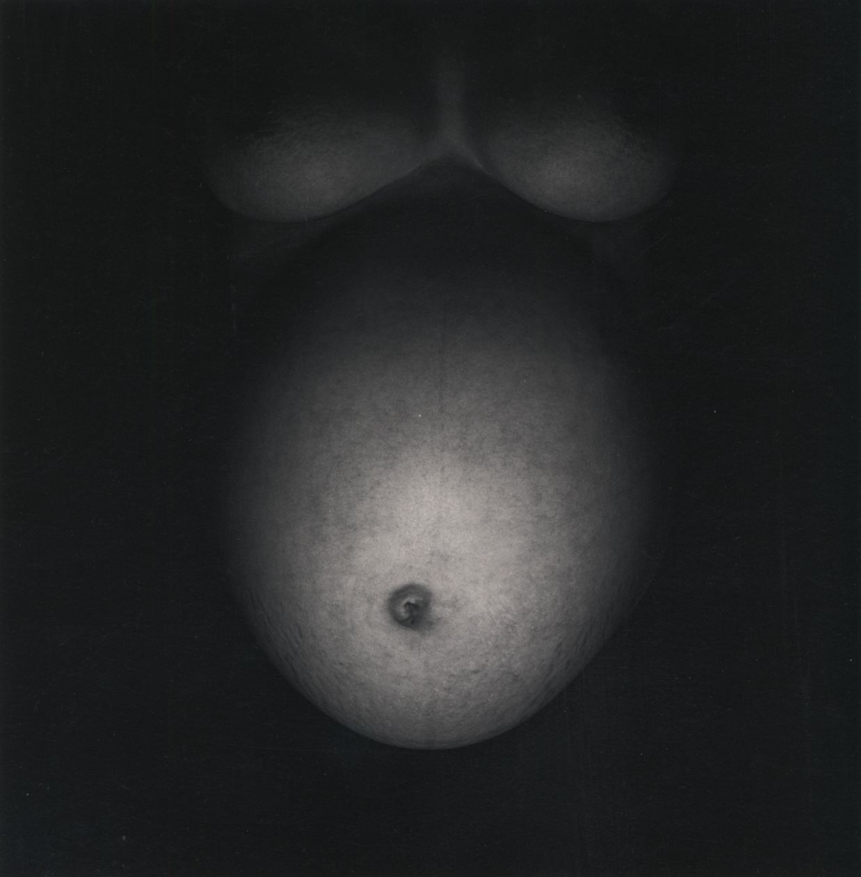 Eleanor and Barbara, Chicago (1949) by Harry Callahan