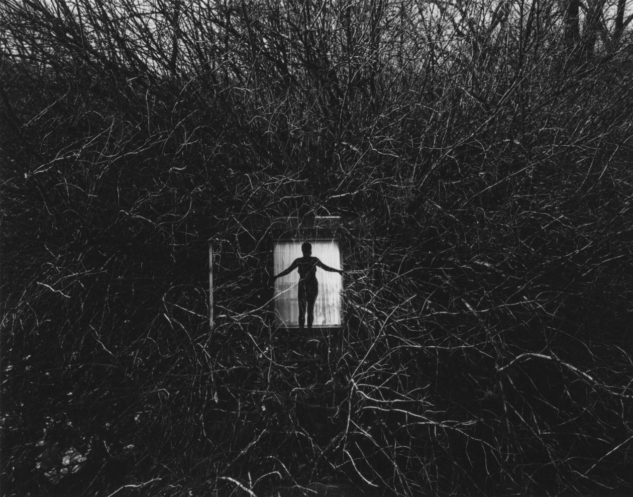 Eleanor, Chicago (1951) by Harry Callahan