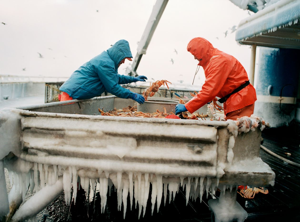 Icicle Sorting (2006) by Corey Arnold