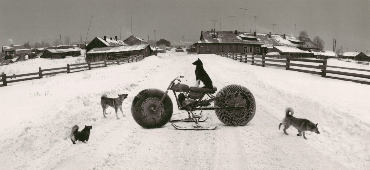 Solovki, White Sea, Russia (Dog on Motorbike) (1992) by Pentti Sammallahti